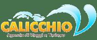 Calicchio Viaggi di Autonoleggio Calicchio a marina di Camerota | Noleggio auto con e senza conducente, trasferimenti, viaggi ed escursioni nel Parco del Cilento.